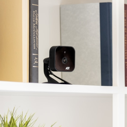 Rockford indoor security camera